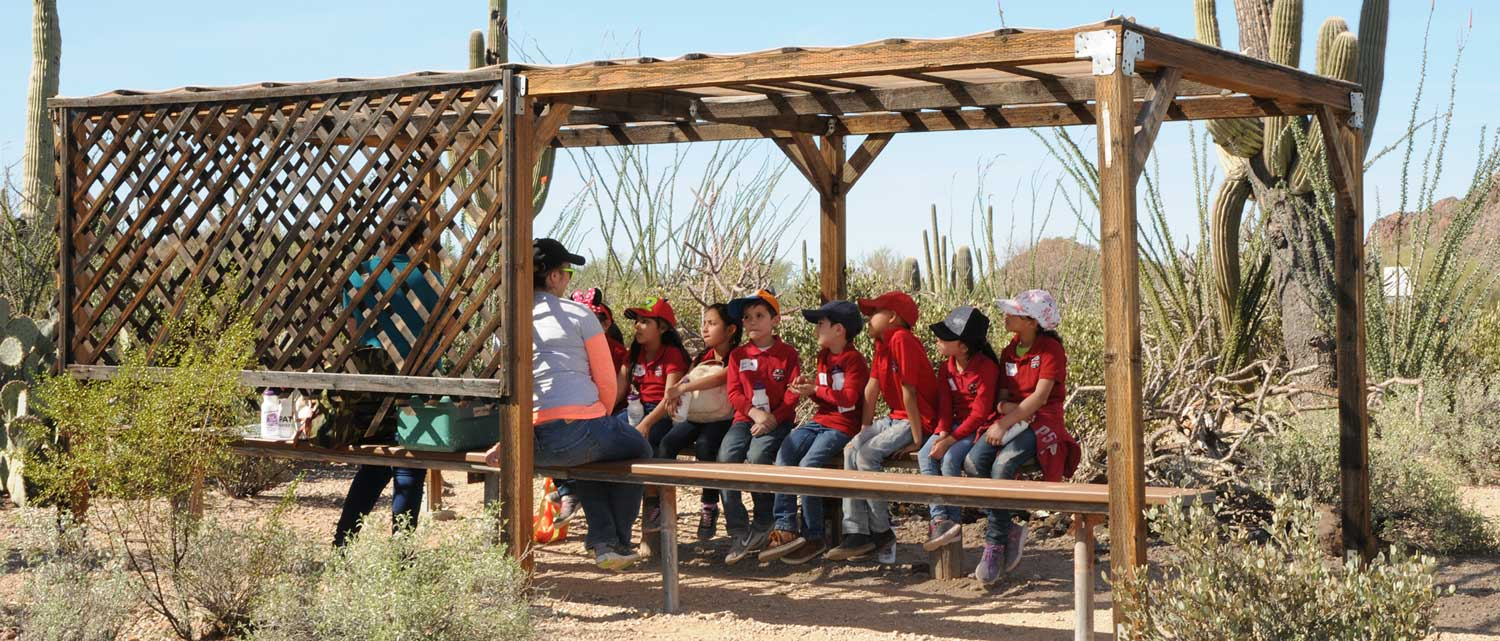 Learning Time in the Sonoran Desert at Camp Cooper