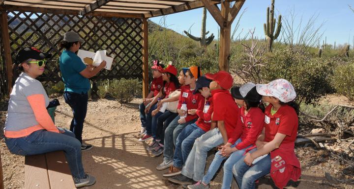 Photo of children learning in the desert.